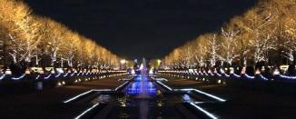 昭和記念公園➄